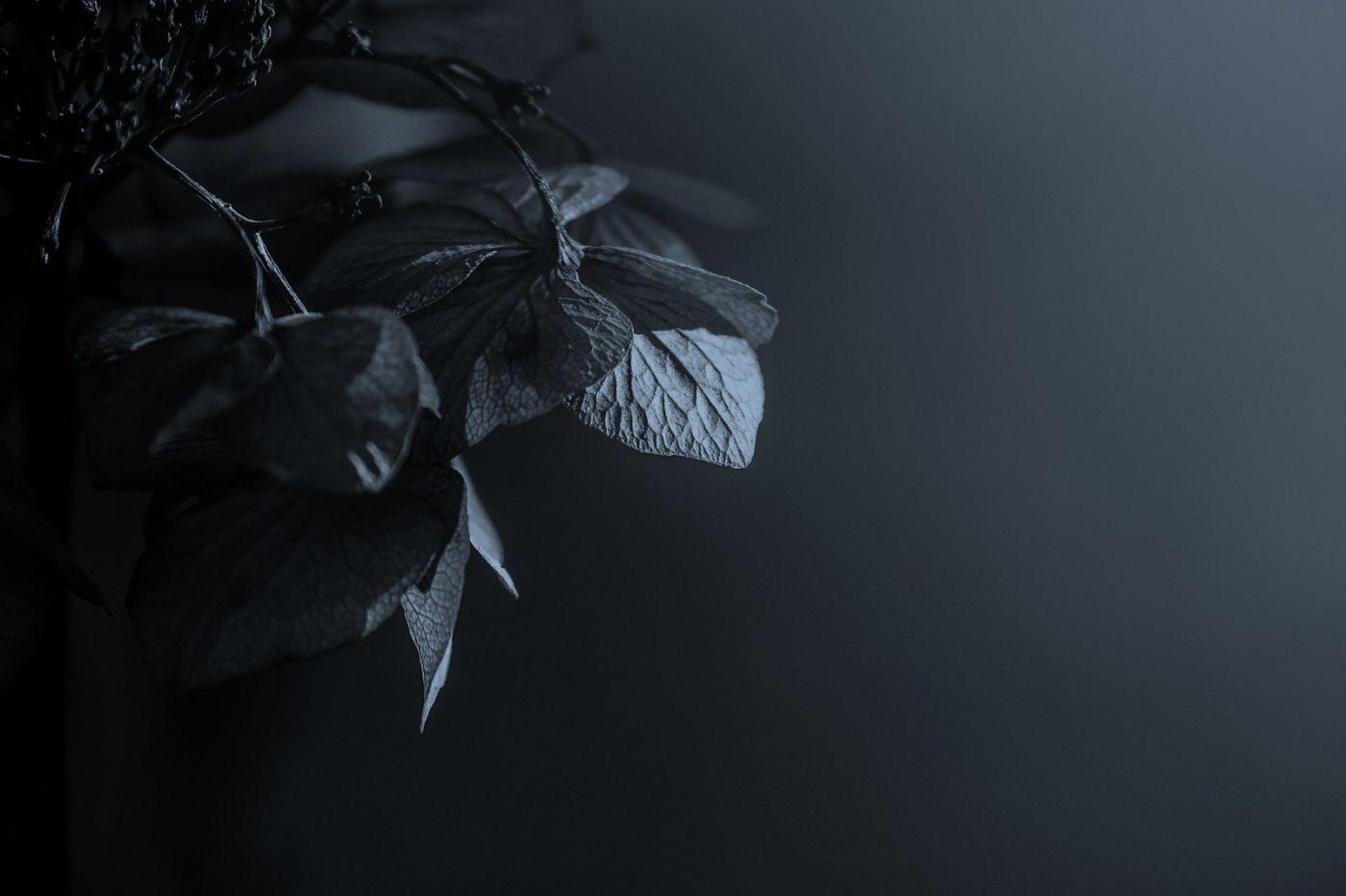 光影中的记忆_图1-4