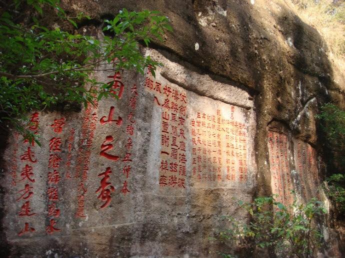中国最值钱的一颗树:花上亿元买保险日夜有警卫保护,大红袍黄山迎客松副国级待遇 ... . ..._图1-3