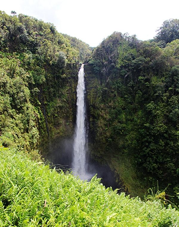 夏威夷大岛一行_图1-22
