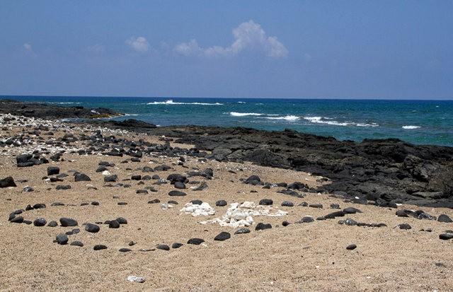 夏威夷大岛一行_图1-30