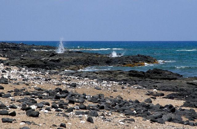 夏威夷大岛一行_图1-31