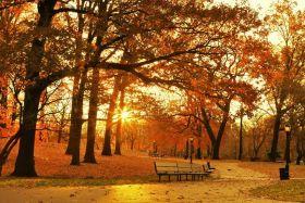 【爱摄影】深秋之美