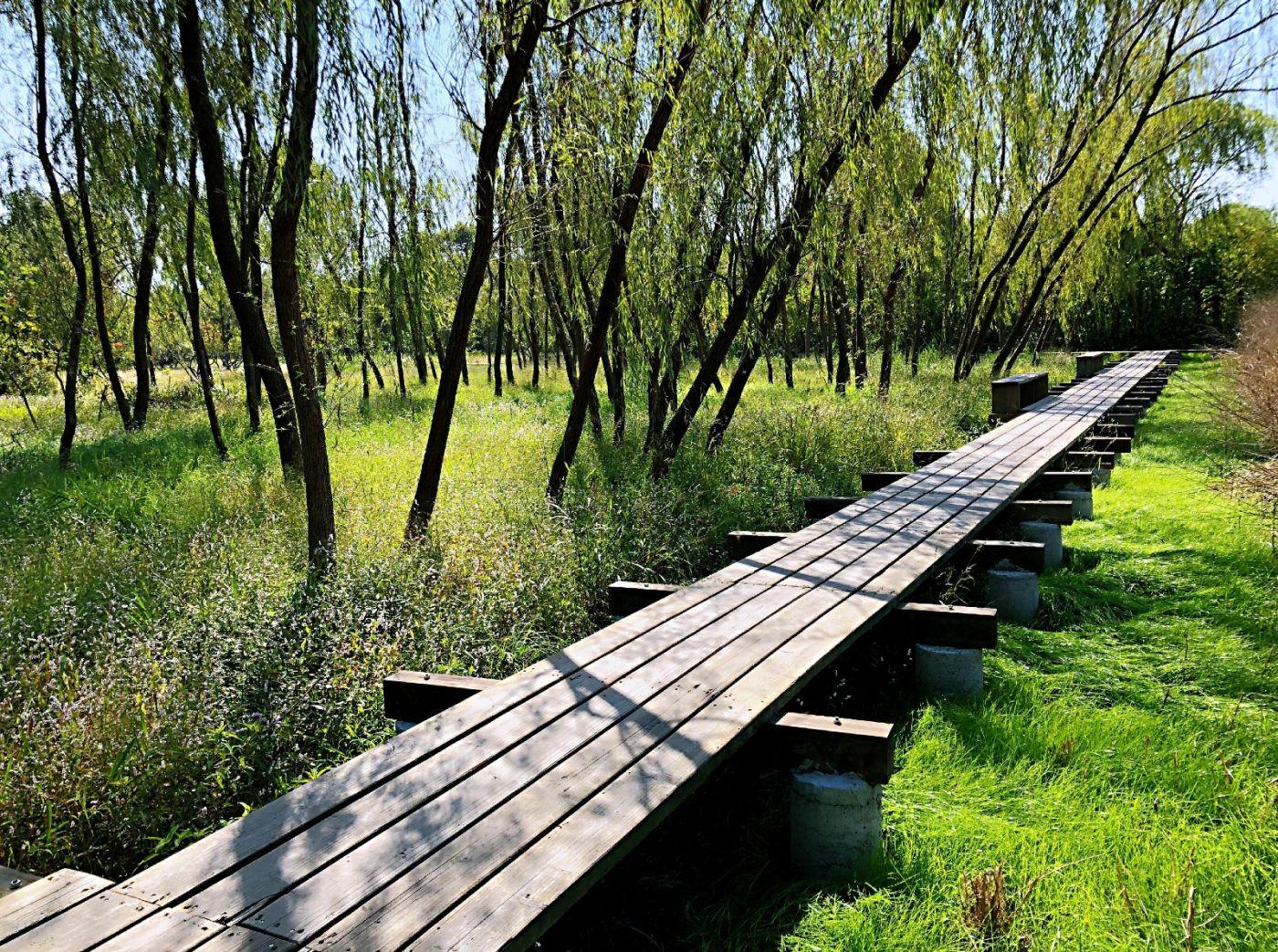 【田螺随拍】西溪湿地、非诚勿扰场景-手机版_图1-12
