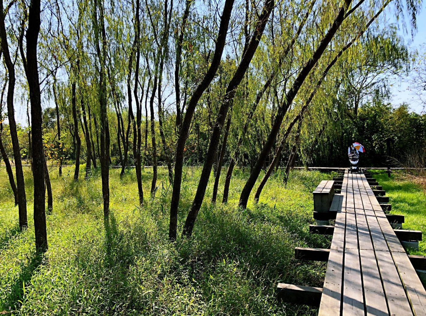 【田螺随拍】西溪湿地、非诚勿扰场景-手机版_图1-13
