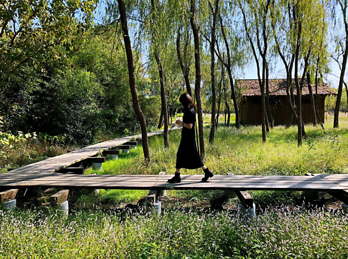 【田螺随拍】西溪湿地、非诚勿扰场景-手机版_图1-17