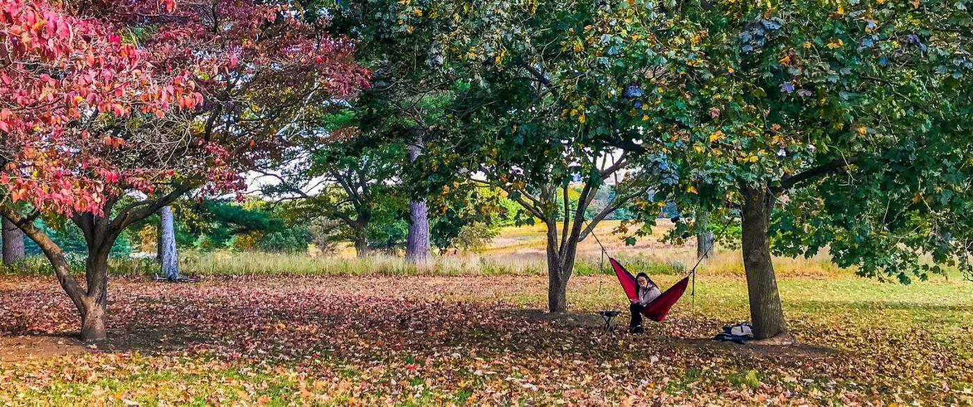 宾州的福吉谷,秋日的漫步 (手机摄影)_图1-4