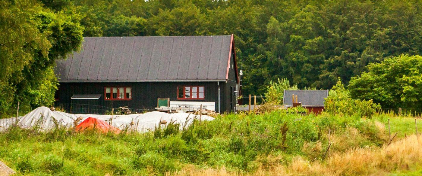 北欧旅途,农庄的前前后后_图1-8