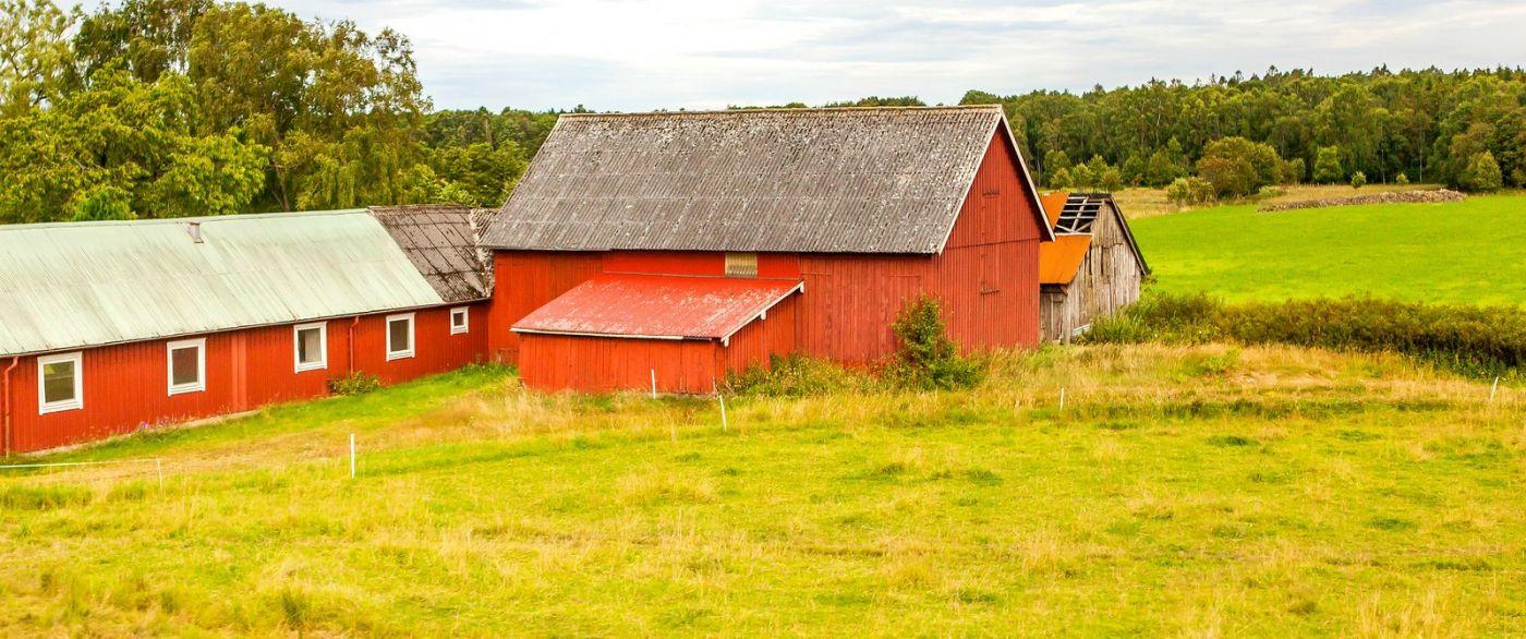 北欧旅途,农庄的前前后后_图1-11