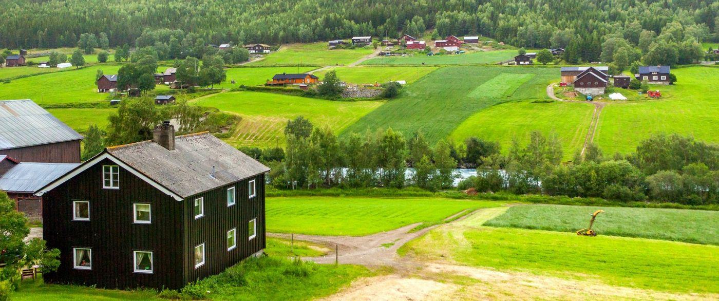 北欧旅途,农庄的前前后后_图1-15