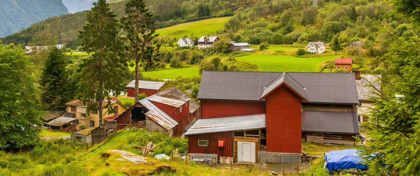 北欧旅途,农庄的前前后后_图1-23