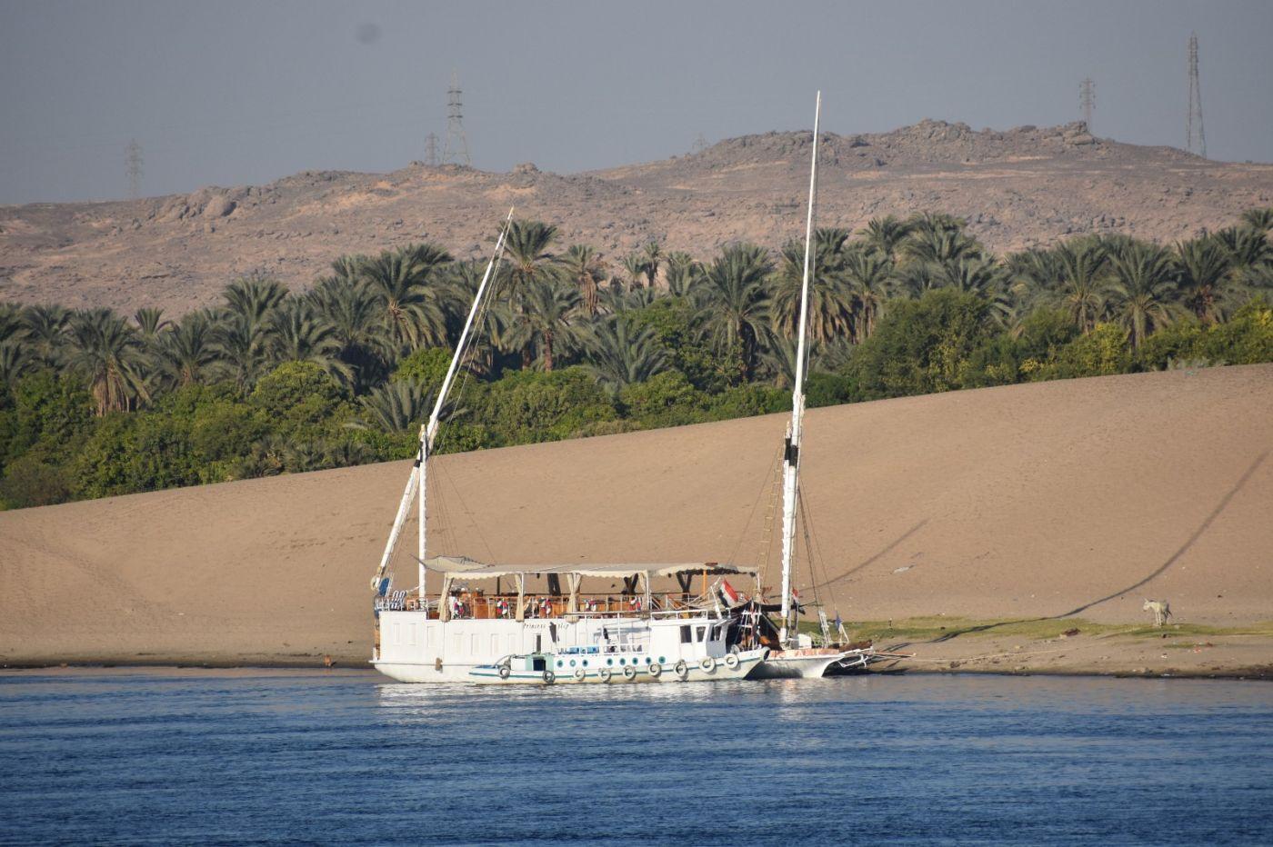 埃及尼罗河风光_图1-8