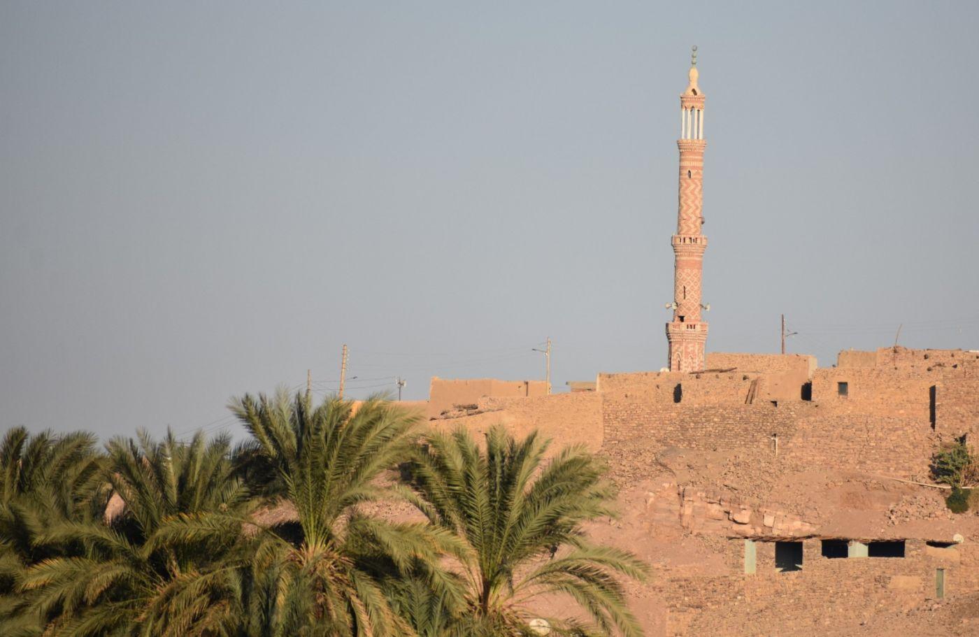 埃及尼罗河风光_图1-12