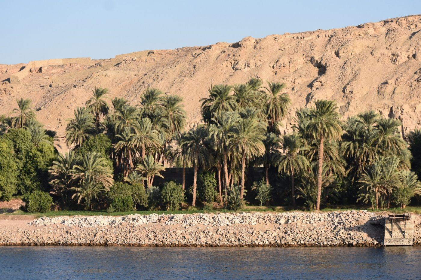 埃及尼罗河风光_图1-13