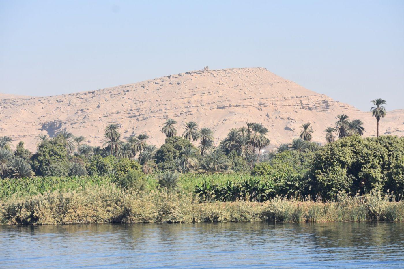 埃及尼罗河风光_图1-19