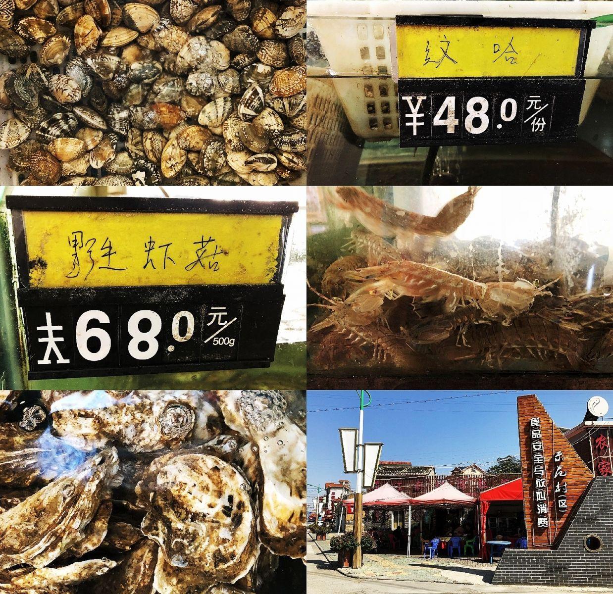 【田螺随拍】洞头鸟岛吃海鲜-手机版_图1-23