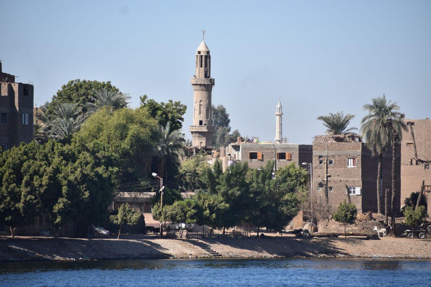 埃及尼罗河风光_图1-49