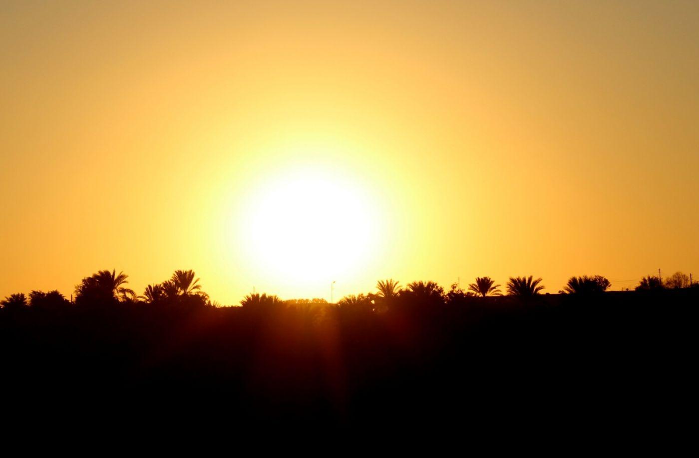 埃及尼罗河风光_图1-53