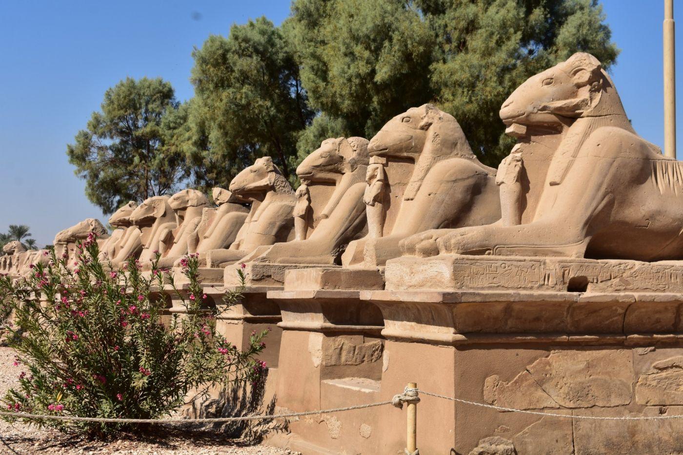 埃及卡纳克神庙群_图1-2