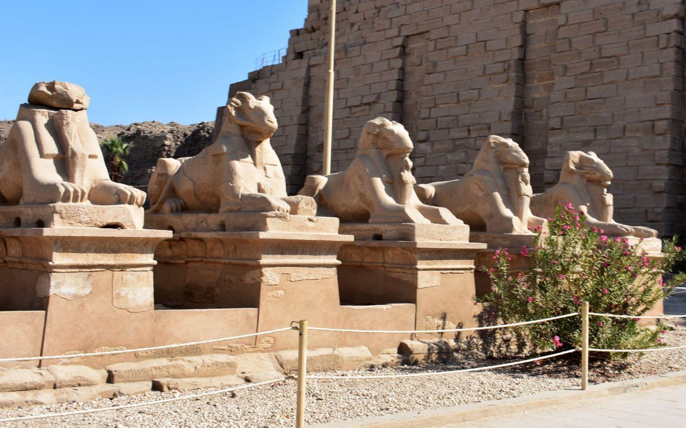 埃及卡纳克神庙群_图1-5