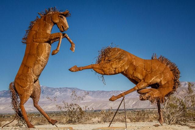 Anza Borrego 州立公园金属雕塑_图1-6