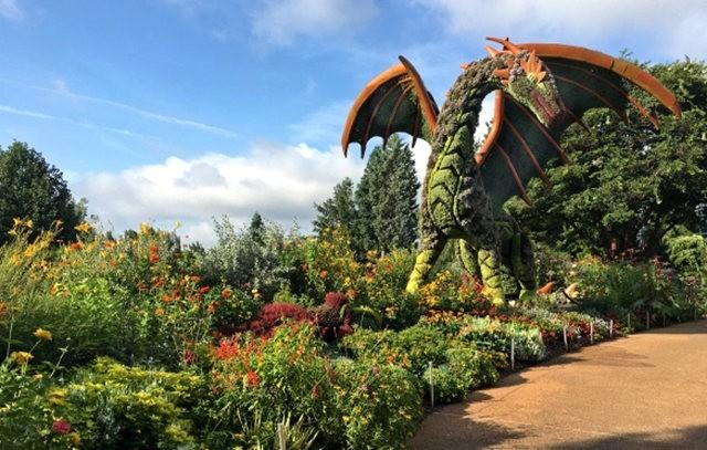 植物园的神奇植物_图1-5
