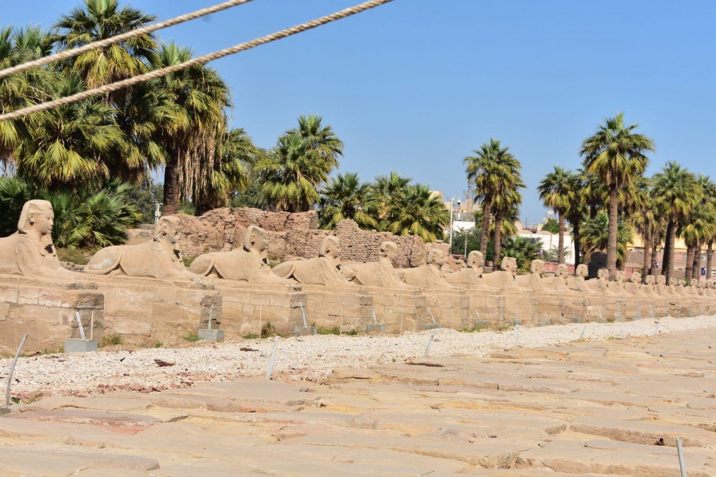埃德富神庙和卢克索神庙_图1-20