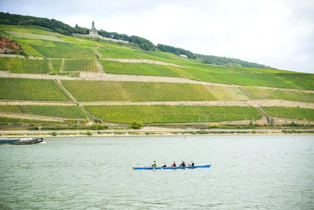 莱茵河中段游_图1-6