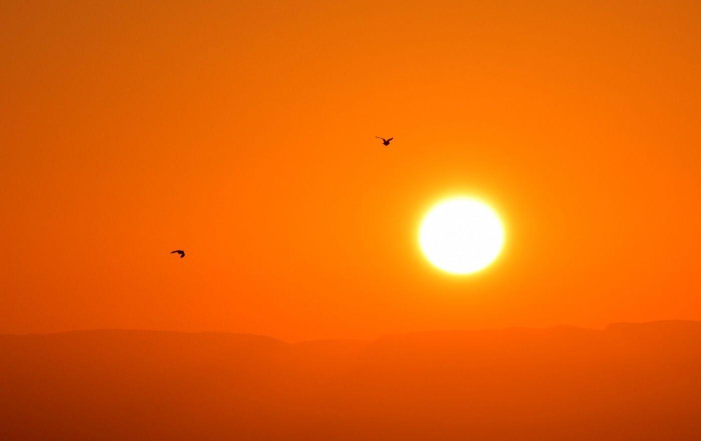 卢克索坐热气球观日出_图1-25