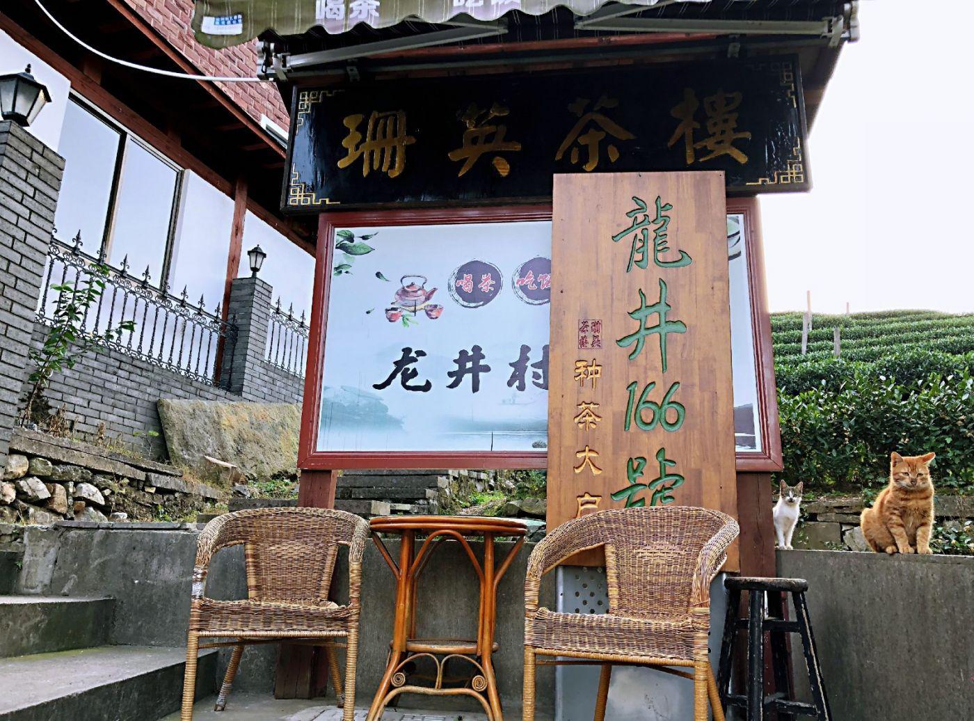 【田螺随拍】杭州龙井茶园-手机版_图1-24