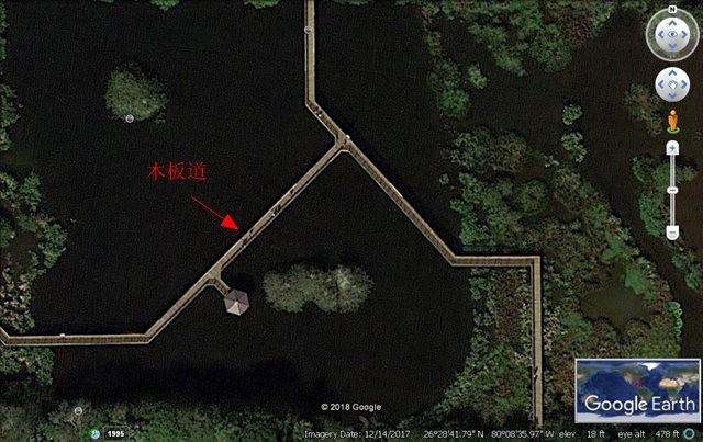 Wakodahatchee Wetlands 濕地_圖1-3