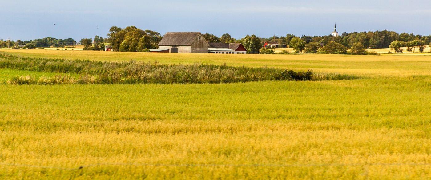 北歐旅途,沿路的漂亮農莊_圖1-11