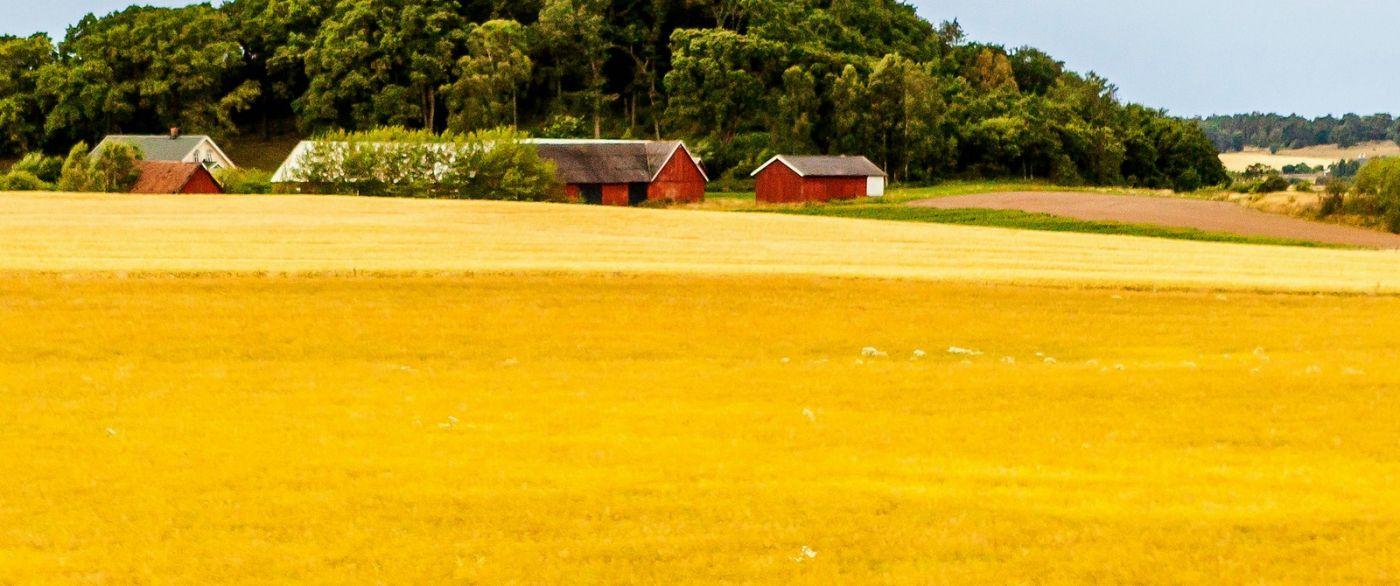 北歐旅途,沿路的漂亮農莊_圖1-16