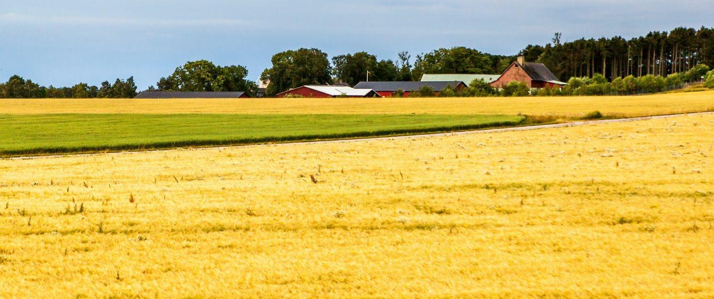北歐旅途,沿路的漂亮農莊_圖1-12