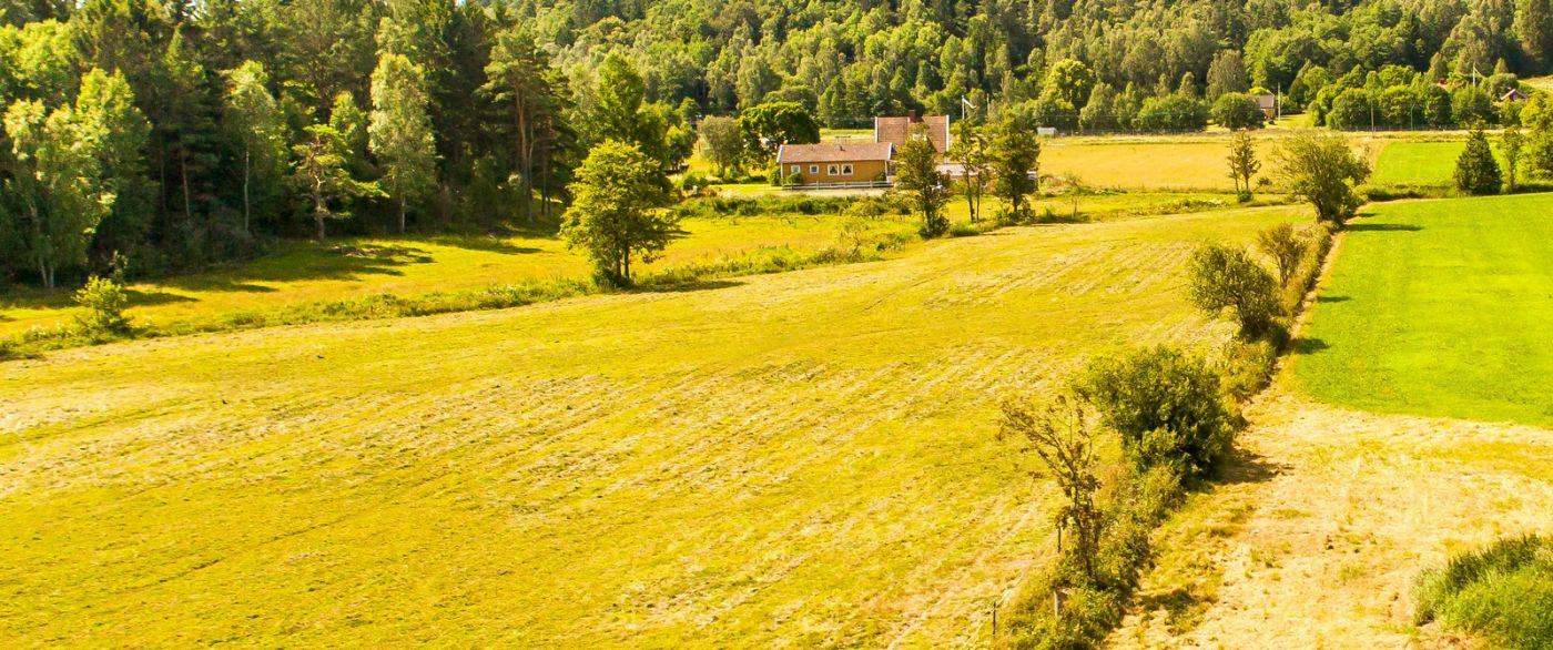 北歐旅途,沿路的漂亮農莊_圖1-10