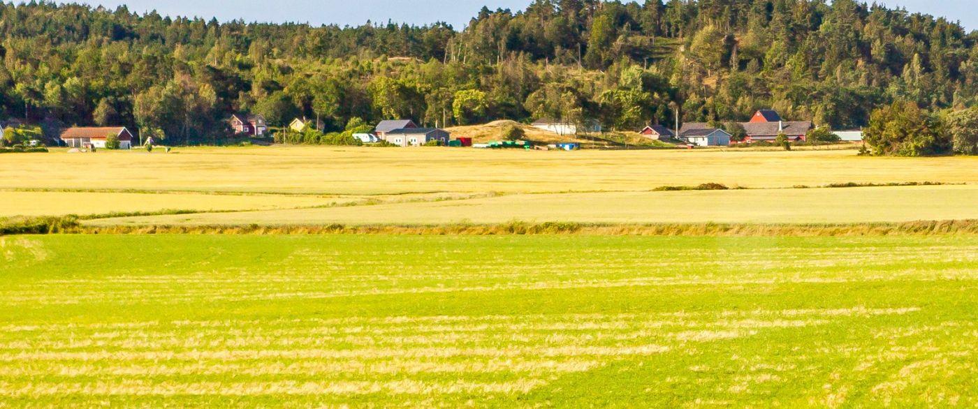 北歐旅途,沿路的漂亮農莊_圖1-9