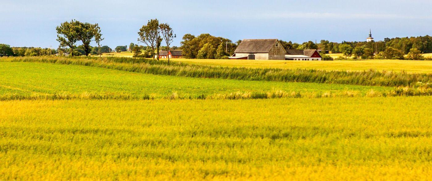 北歐旅途,沿路的漂亮農莊_圖1-5