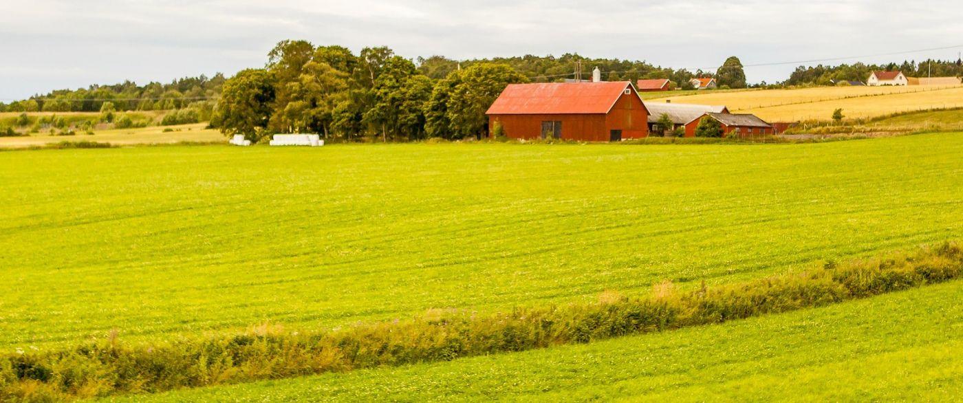 北歐旅途,沿路的漂亮農莊_圖1-6