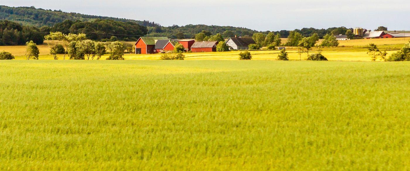 北歐旅途,沿路的漂亮農莊_圖1-7