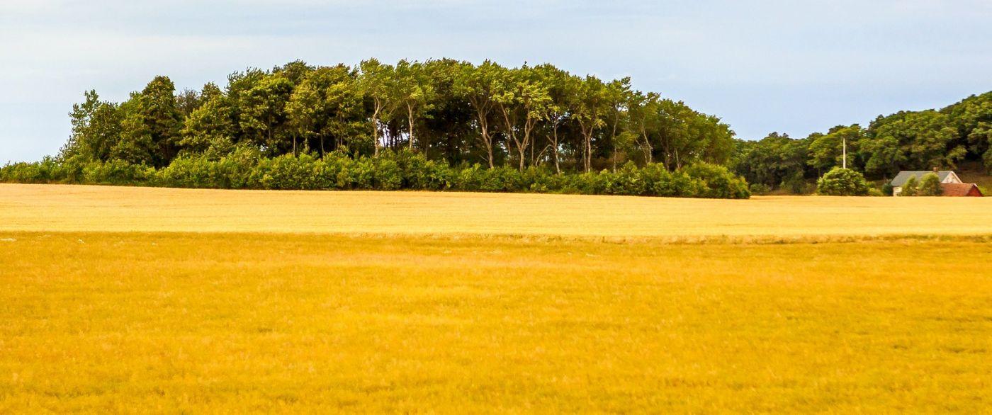 北歐旅途,沿路的漂亮農莊_圖1-8