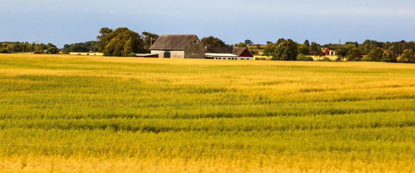 北歐旅途,沿路的漂亮農莊_圖1-3