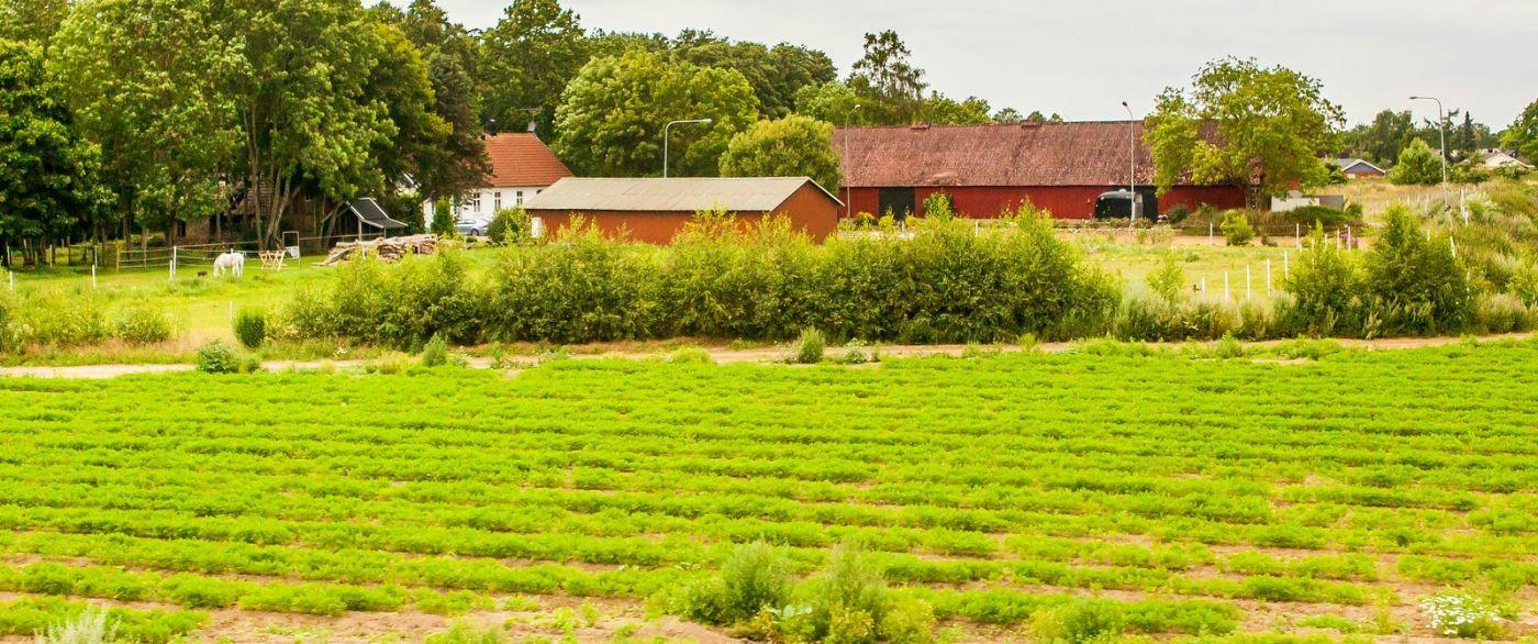北歐旅途,沿路的漂亮農莊_圖1-1