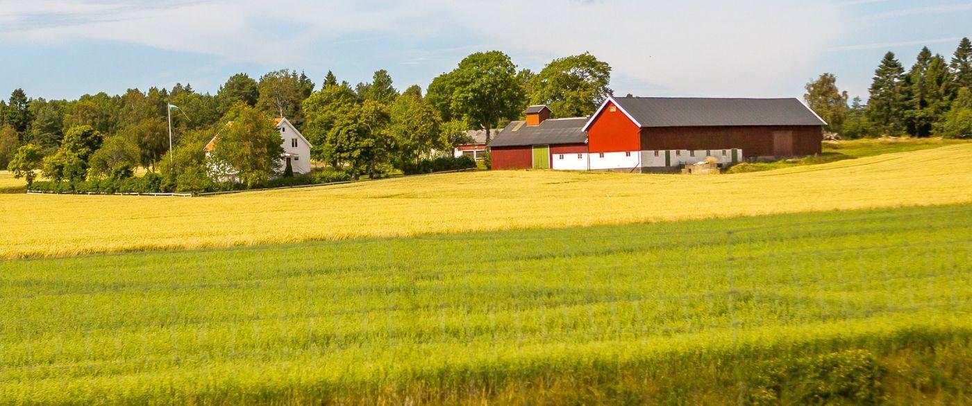 北歐旅途,沿路的漂亮農莊_圖1-20