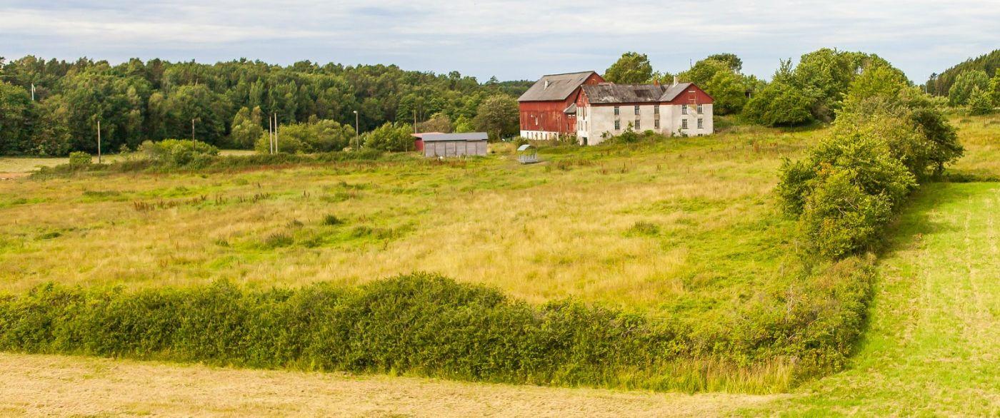 北歐旅途,沿路的漂亮農莊_圖1-19
