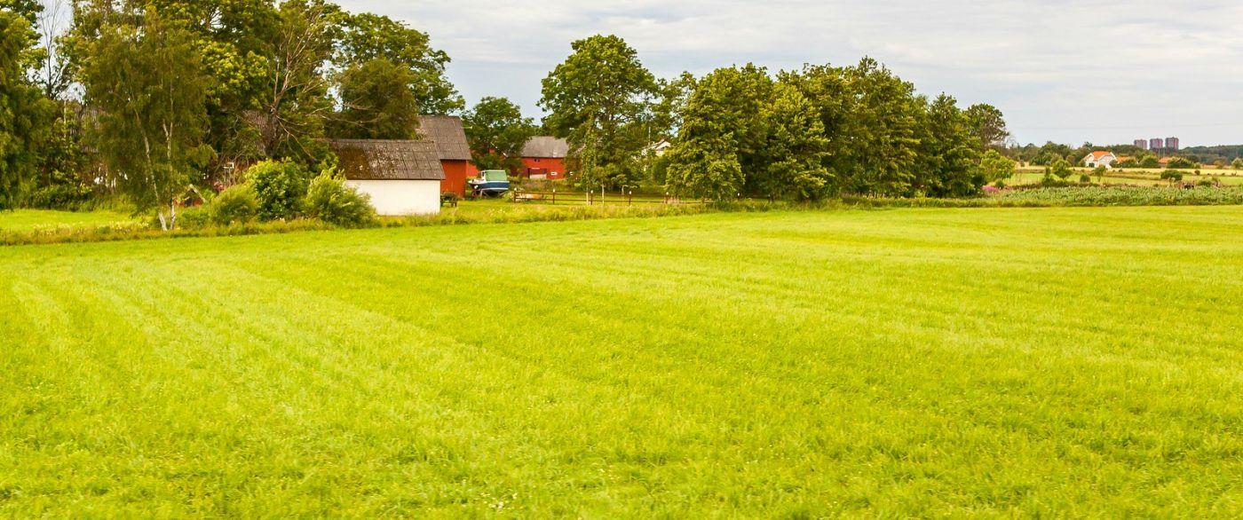 北歐旅途,沿路的漂亮農莊_圖1-18