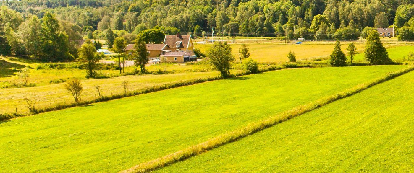 北歐旅途,沿路的漂亮農莊_圖1-22