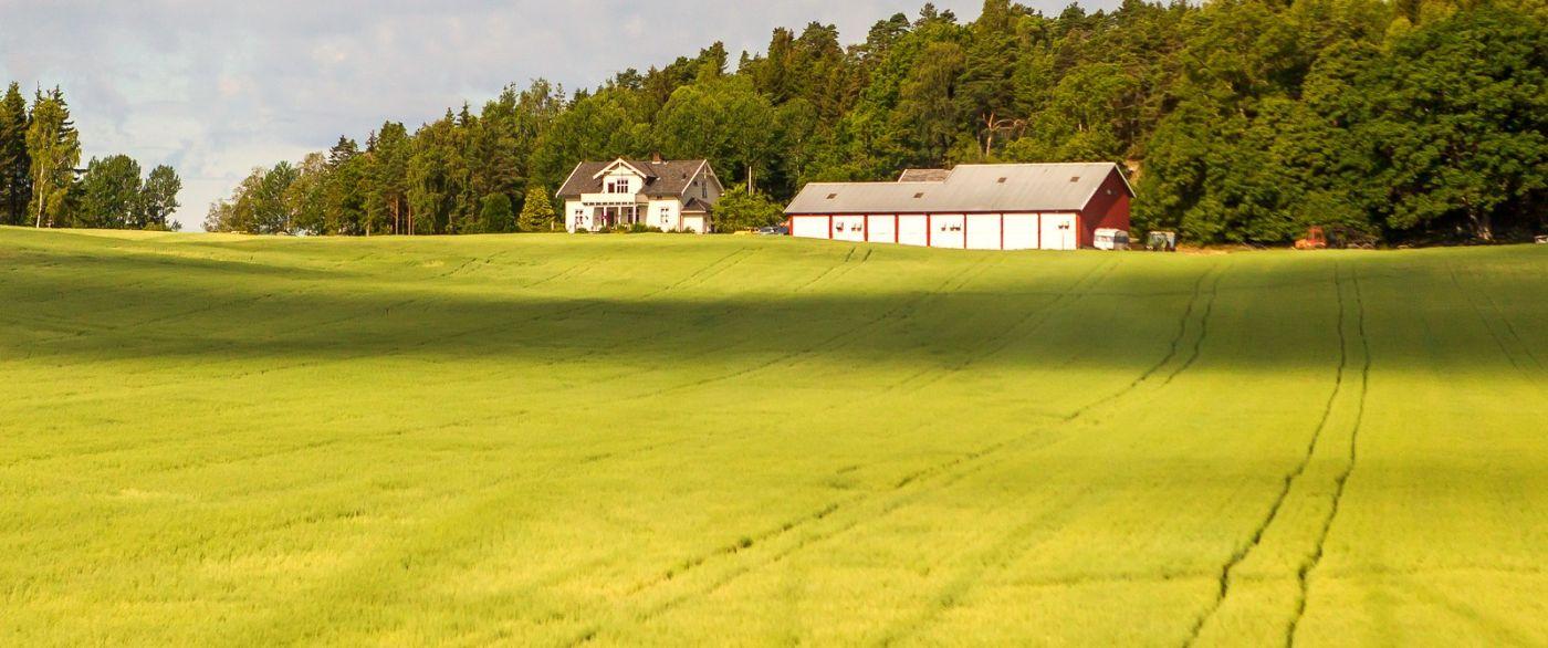 北歐旅途,沿路的漂亮農莊_圖1-28