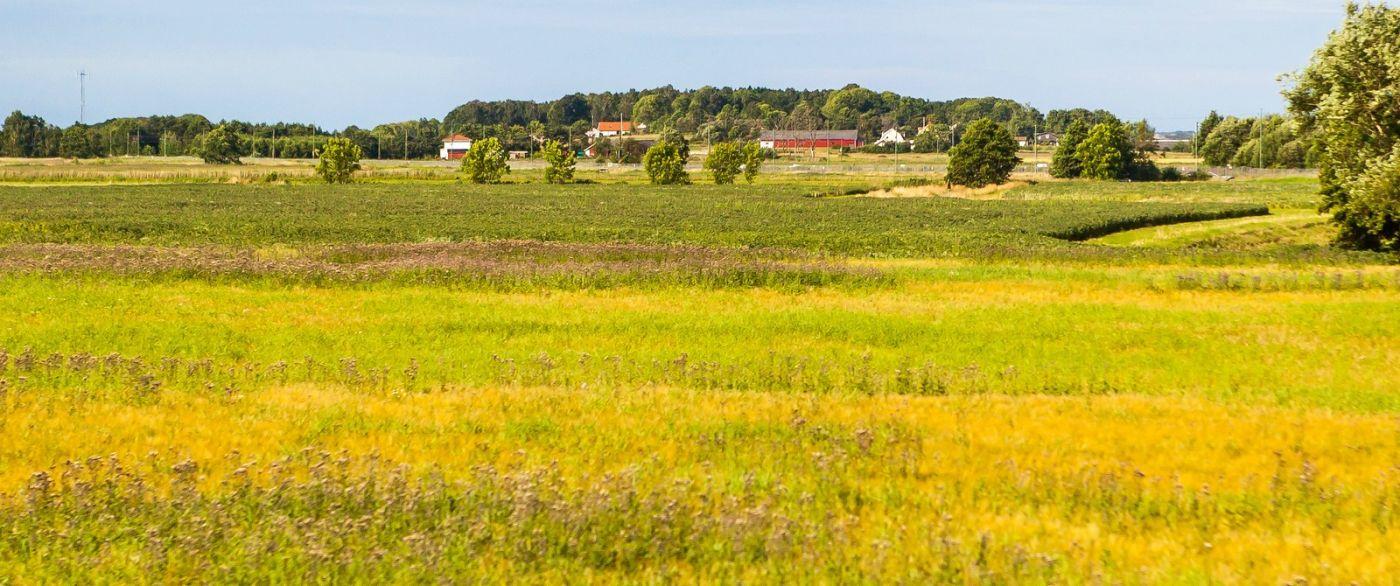 北歐旅途,沿路的漂亮農莊_圖1-24