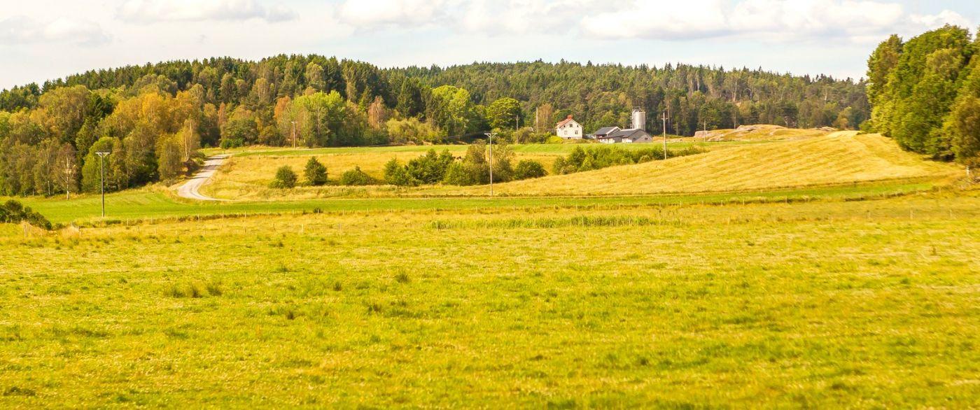 北歐旅途,沿路的漂亮農莊_圖1-25