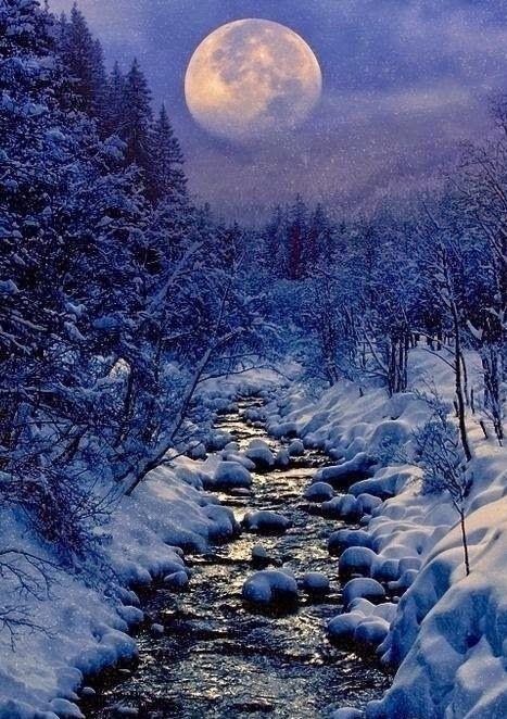 今又是《冬至的月喻》_图1-1