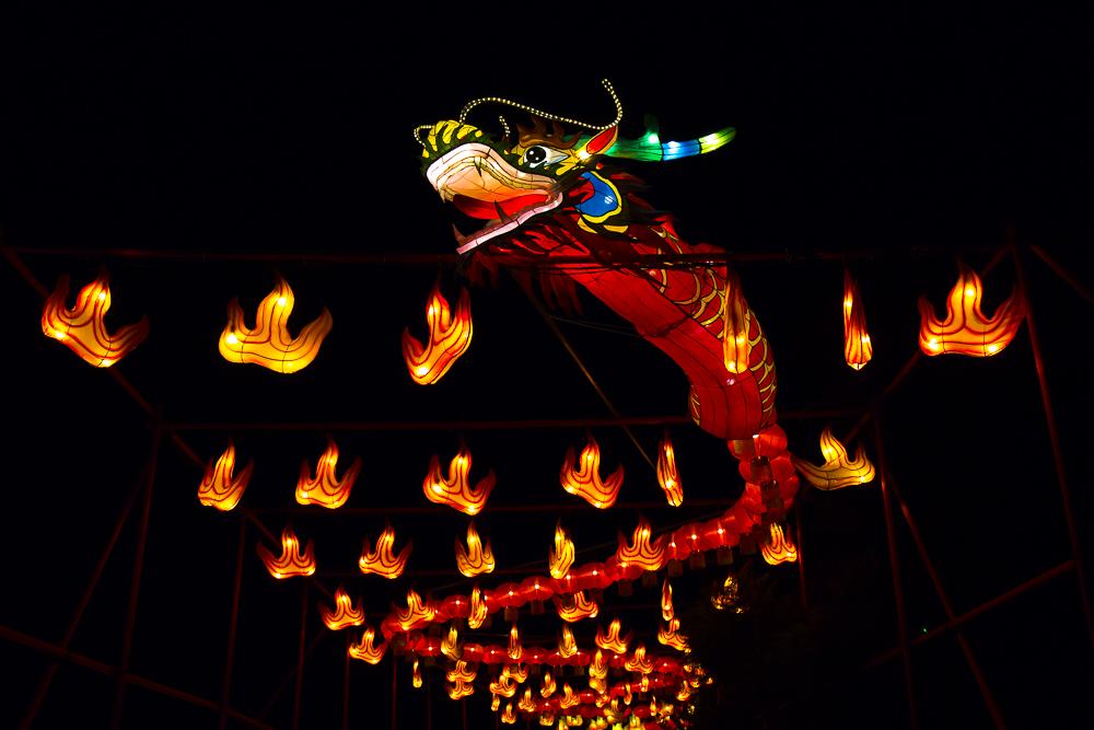 Moonlight Forest 洛杉磯植物園燈飾展覽_圖1-2
